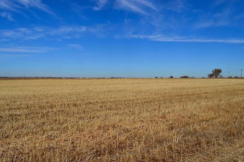 Retchloff Farm For Sale - McClave, CO | McClave, CO - Bent ...