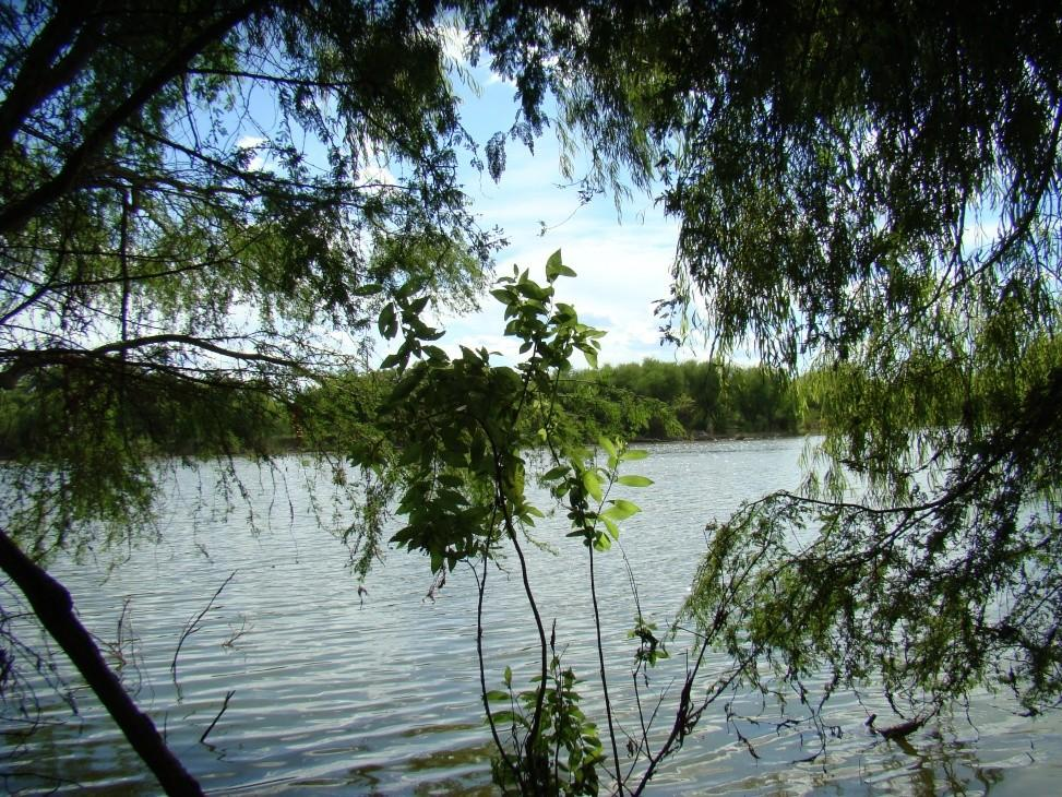 391 Acres, Hunting and Fishing Property | George West, TX