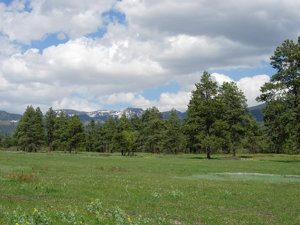 Powder Keg Ranch | Pagosa Springs, CO - Archuleta County ...